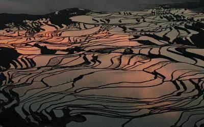 Las terrazas de Yuanyang