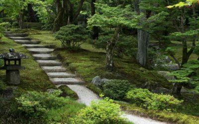 La paz del barrio Rakuhoku en Kioto