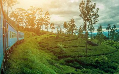 Moverse en Sri Lanka