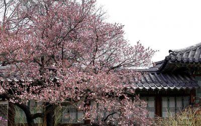 Palacio de Changdeokgung: la segunda residencia imperial