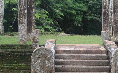 Polonnaruva, la antigua capital de Sri Lanka comida por la selva