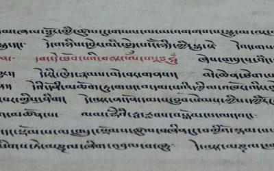 Los libros básicos del Tíbet